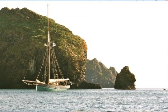 Agnes anchored