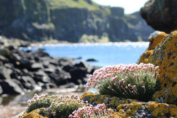 Hebrides coastline
