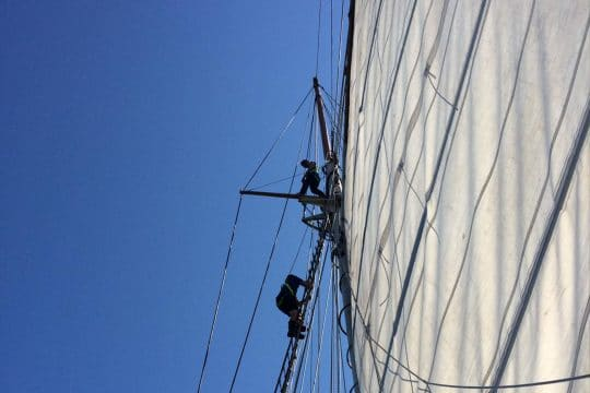 Blue Clipper guests up the mast