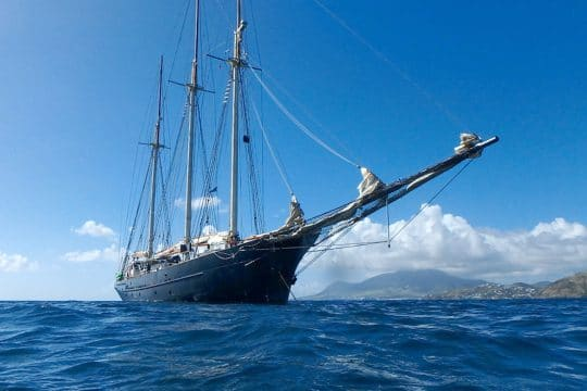 Blue-clipper-fullview