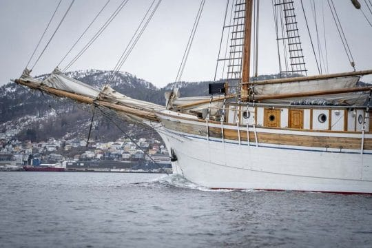 Linden Full Sail Norway Fjord