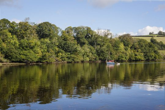 Devon River Dart
