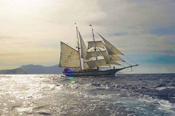 Florette Full sail sailing