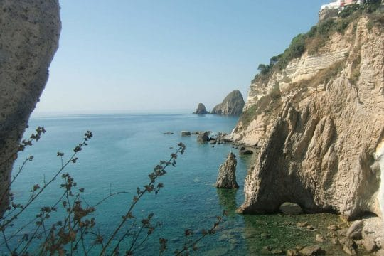 Florette Med Sea