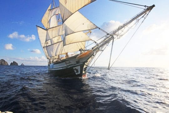 Florette Sailing from the bows