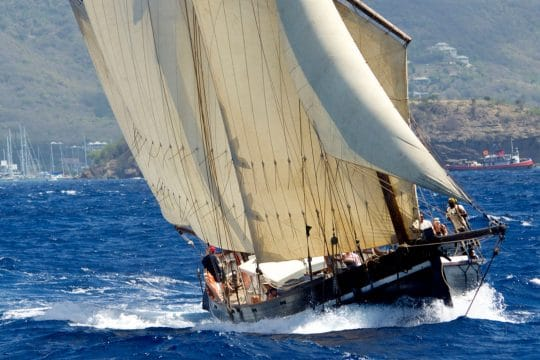 Grayhound sailing