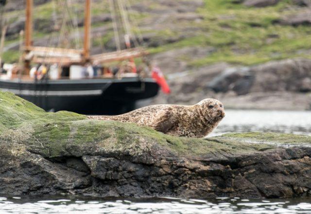 Hebridean Magic Under Sail