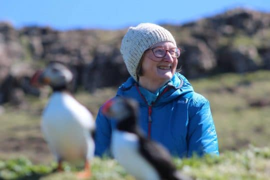 Puffins and guest on St Kilda