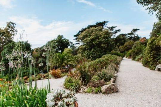 Tresco Abbey Gardens Isles of Scilly Sailing Holiday
