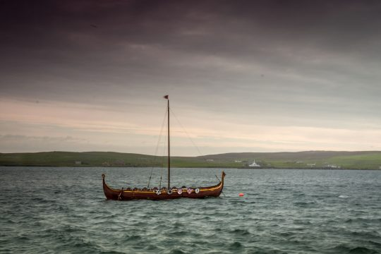 Narwhal viking boat