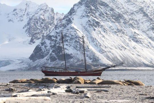Noorderlicht anchored