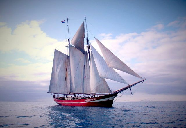 Sailing & Whale Watching in Norway