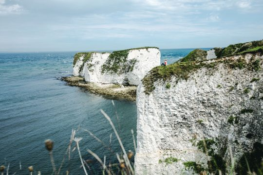 Old Harry Rocks Dorset