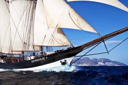 Oosterschelde bows sailing