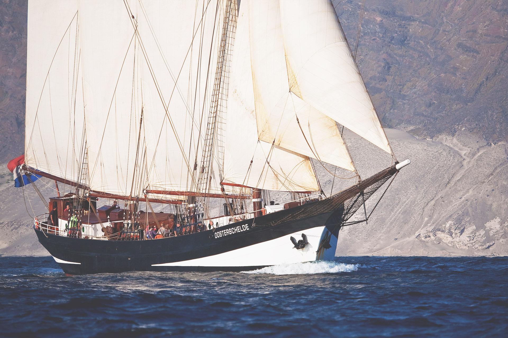 Oosterschelde sailing close-up