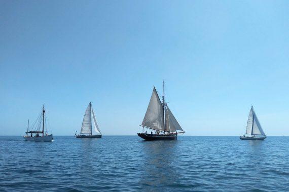 Pellew Sailing