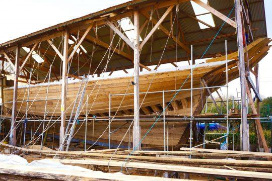 Pellow oak planked