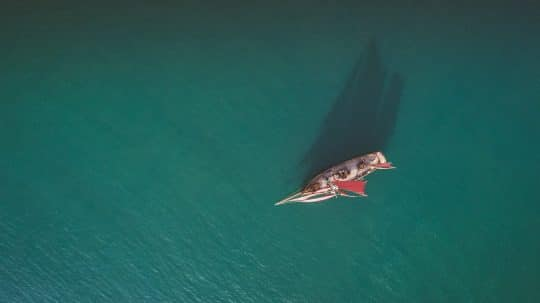 Pilgrim-aerial-overhead