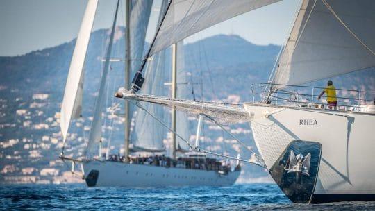 Rhea bows sailing