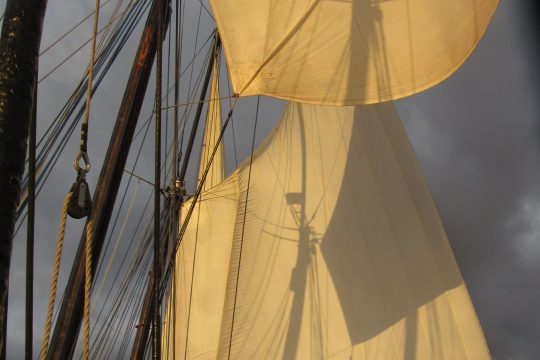 Trinovante sun in sails