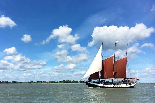 Trinovante taster sail