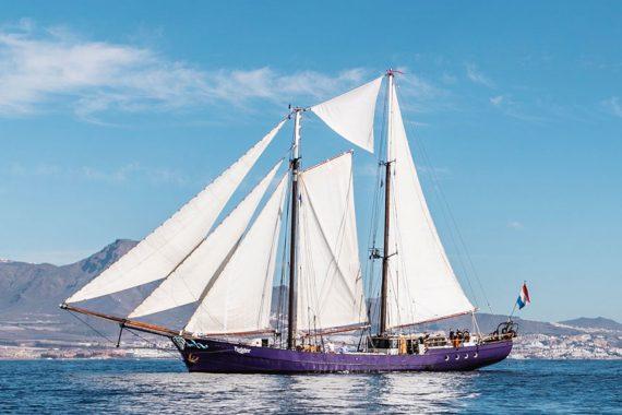 Twister full sailing sails